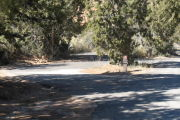 Photo: KO04, Basin Campground
